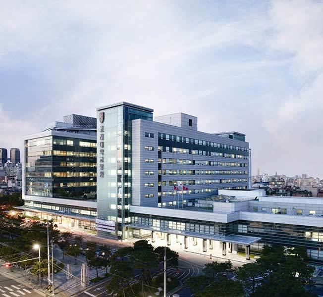 Large Korea University Anam Hospital